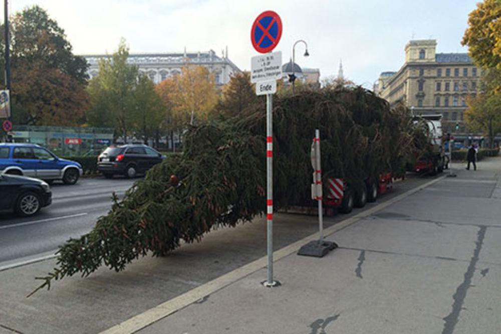 U Beč stiglo tirolsko božićno drvo, lampice se pale 15. novembra!