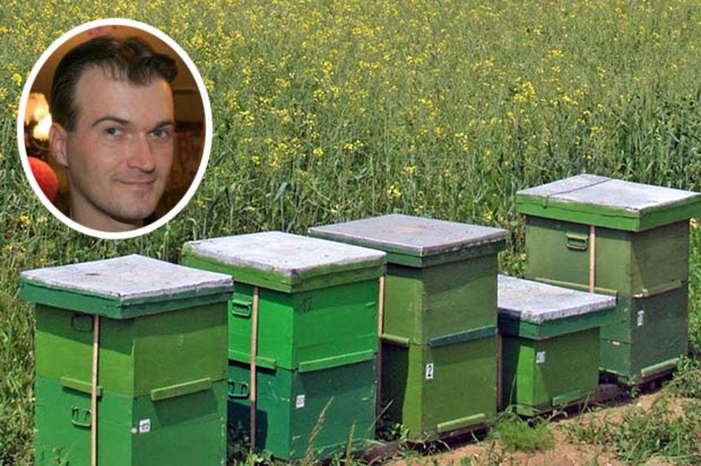 PROIZVEDU 100 TONA MEDA GODIŠNJE: Bosanci upravljaju najvećim pčelinjakom u Njujorku!