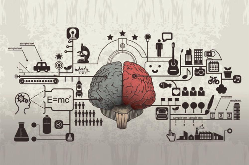 ANDROID, AJFON, BLEKBERI: Na kom operativnom sistemu radi tvoj mozak?