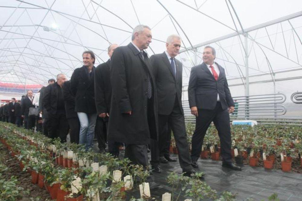 NIKOLIĆ OTVORIO PLASTENIK: Srpske ruže za ruske dame