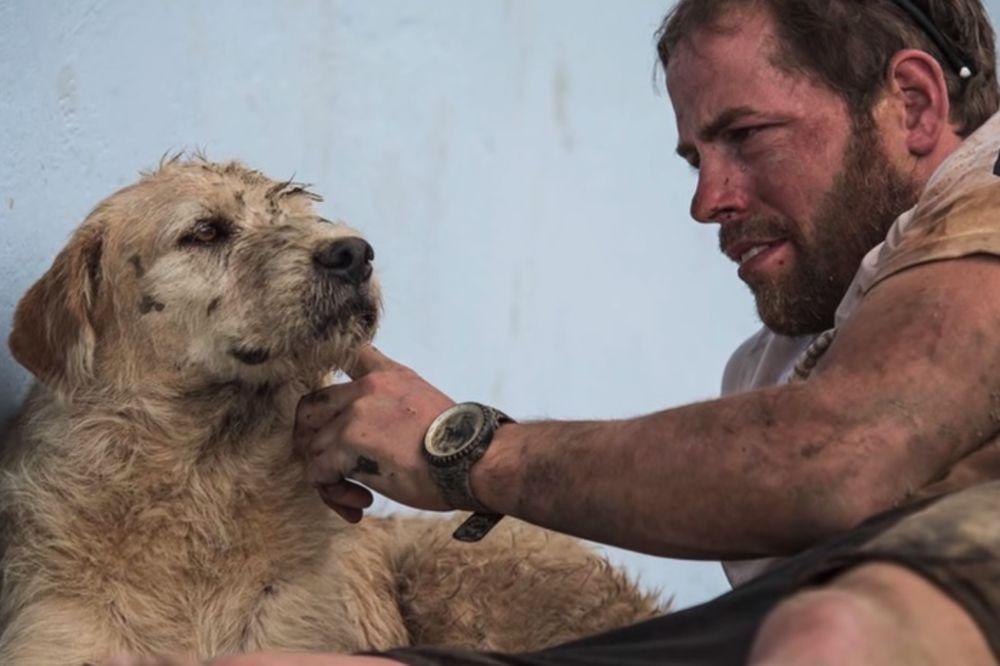 (VIDEO) OD LUTALICE DO ZVEZDE: Pas ih pratio 700 km, preživeo pakao i pronašao dom!