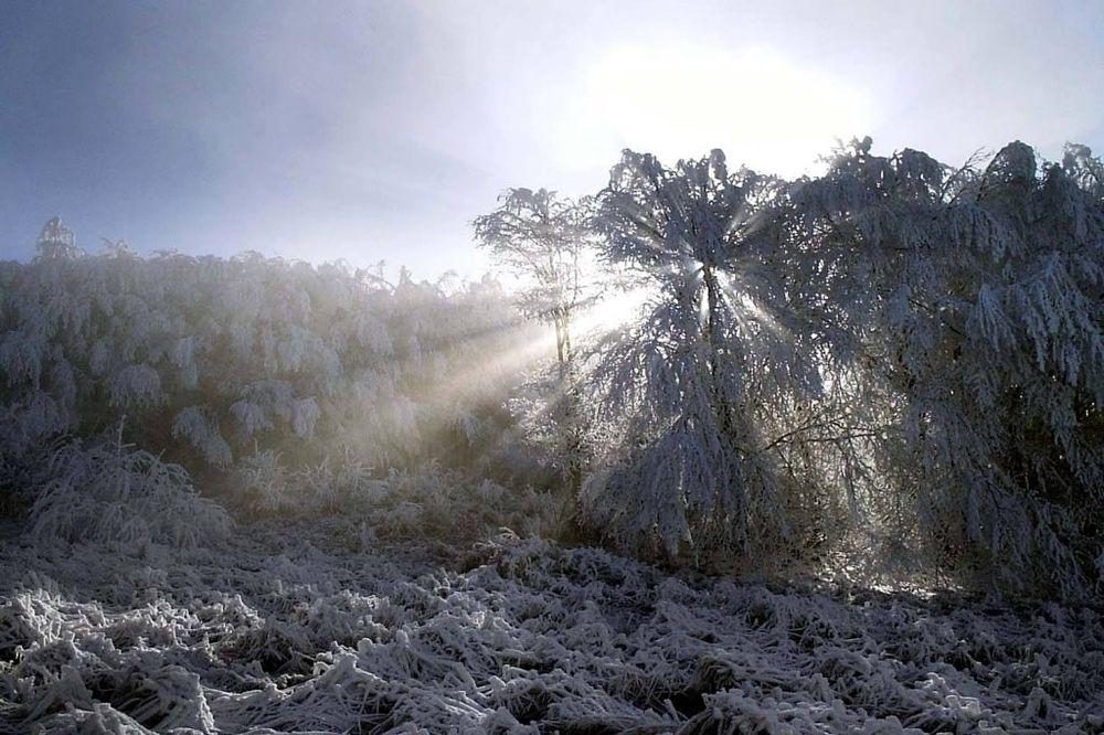 MINUS 7: Crni vrh najhladniji, najtopliji Zlatibor sa 6 u plusu!