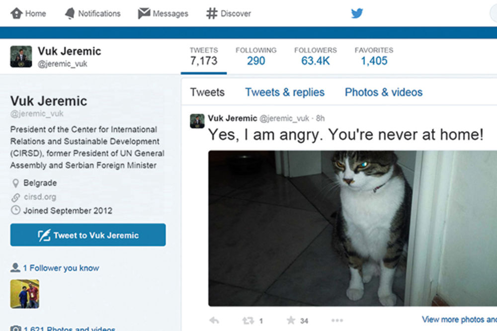 Jeremić pokazao mačora na Tviteru