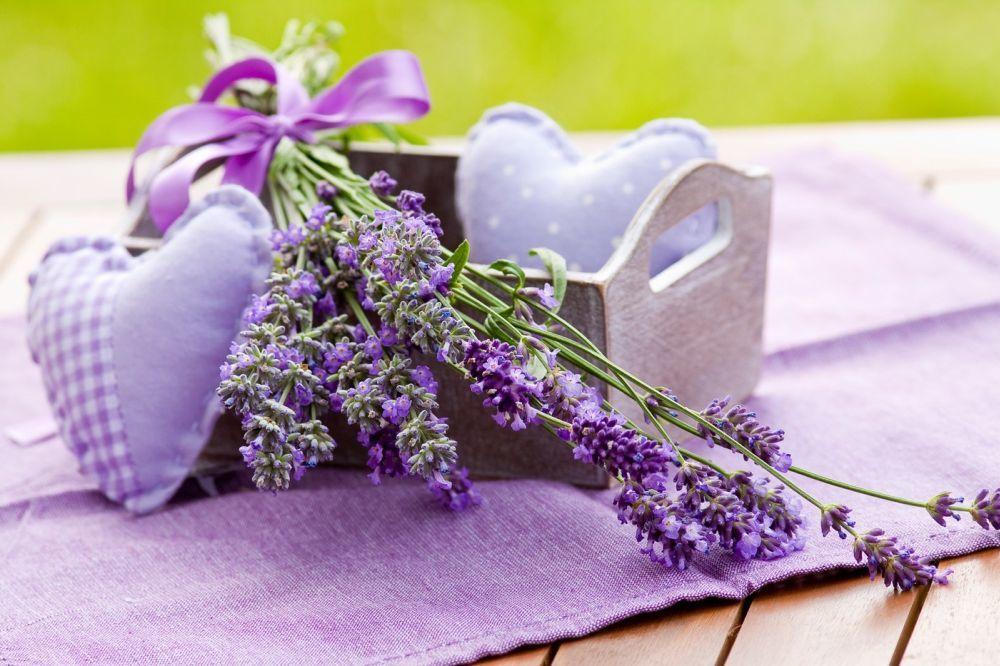 UMESTO HEMIKALIJA: Prirodna sredstva protiv neprijatnih mirisa u domu
