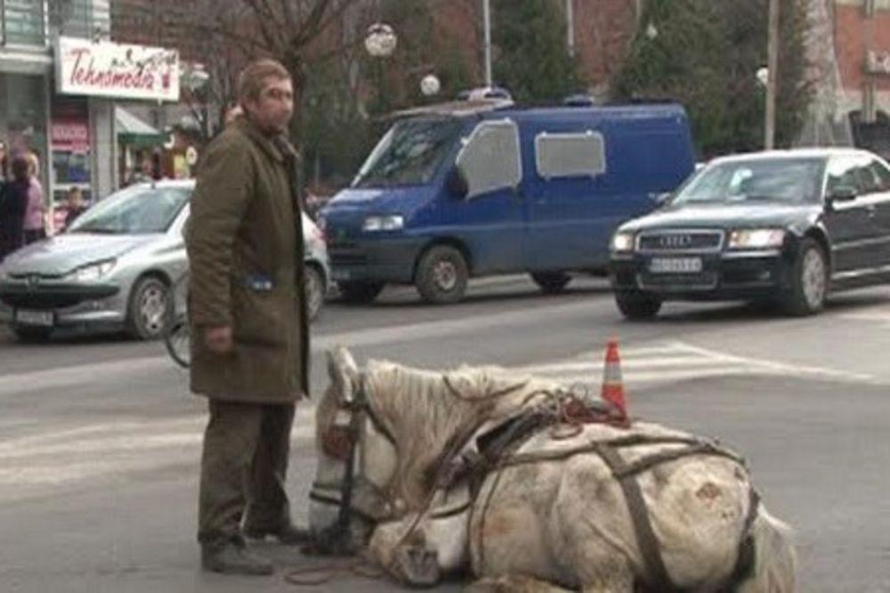 (VIDEO) STIGLA GA SUDBINA KONJA: Pretučen čovek koji je zlostavljao životinju u Jagodini!