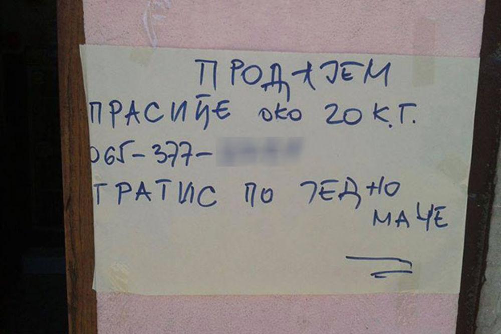 HIT OGLAS KRUŽI INTERNETOM: Čovek prodaje prasiće, a evo šta nudi gratis!