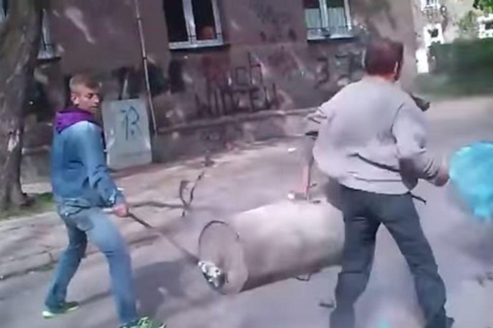 (VIDEO) OVO SAMO MOGU RUSI: Kad eksplodira top od kante za đubre!