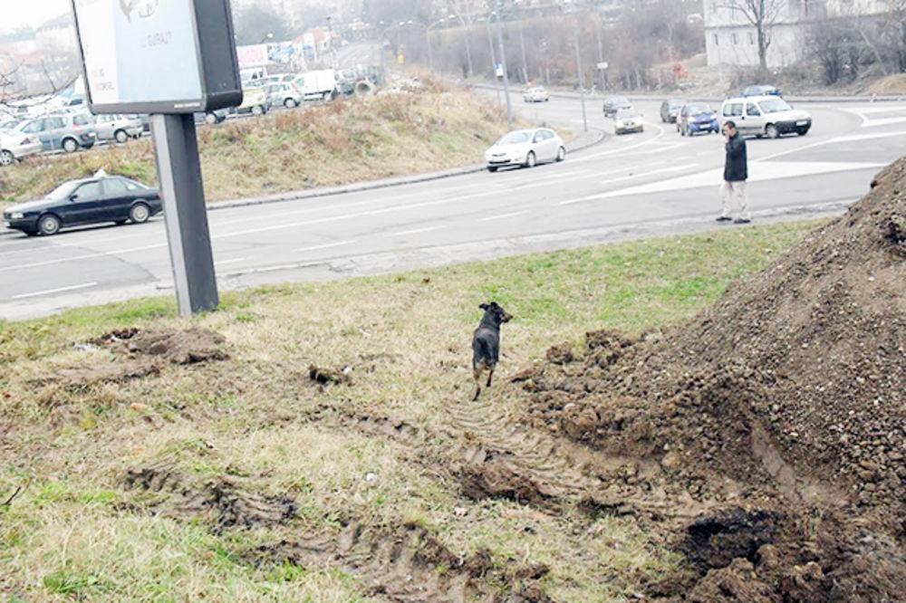 OKONČANA DRAMA NA VOŽDOVCU: Pas posle 8 dana oslobođen iz šahta