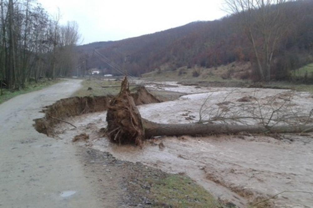 VANREDNO STANJE ZBOG POPLAVA: Voda čupa drveće, sela bez struje u Vranju