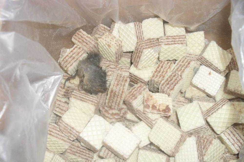 NIJE SAMO KOD NAS: Sarajka pronašla mrtvog miša u kutiji napolitanki