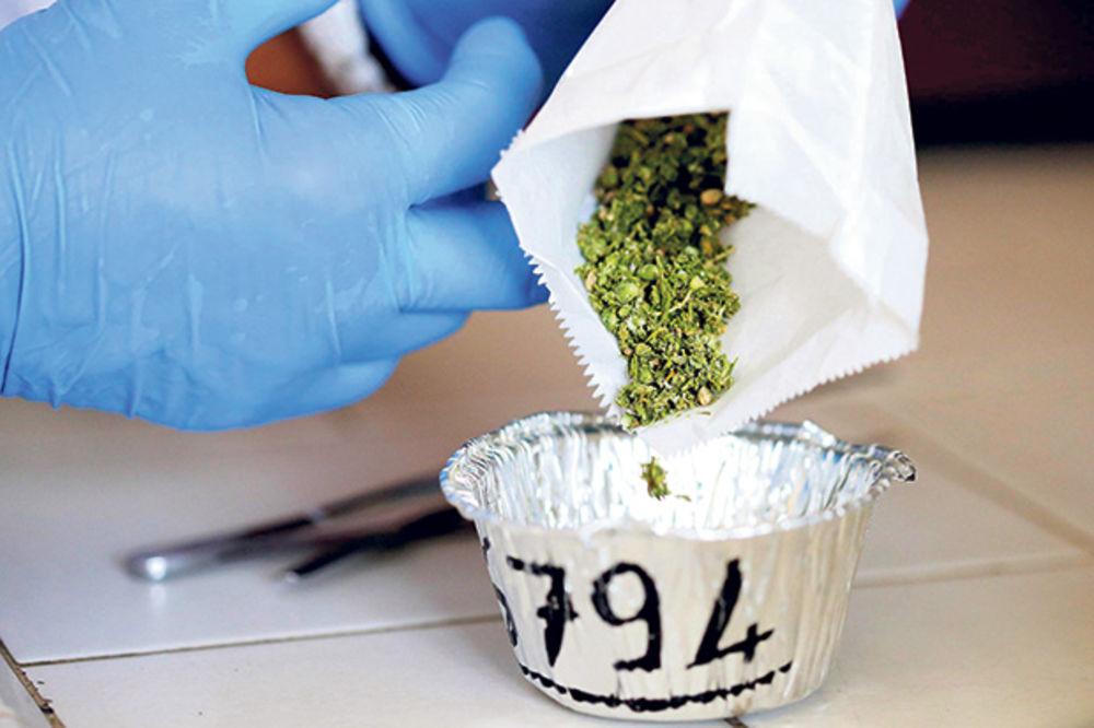 POSLE NIŠLIJKE (68) OTKRIVENA JOŠ JEDNA: Baka (75) prodavala marihuanu u Bačkoj Palanci!