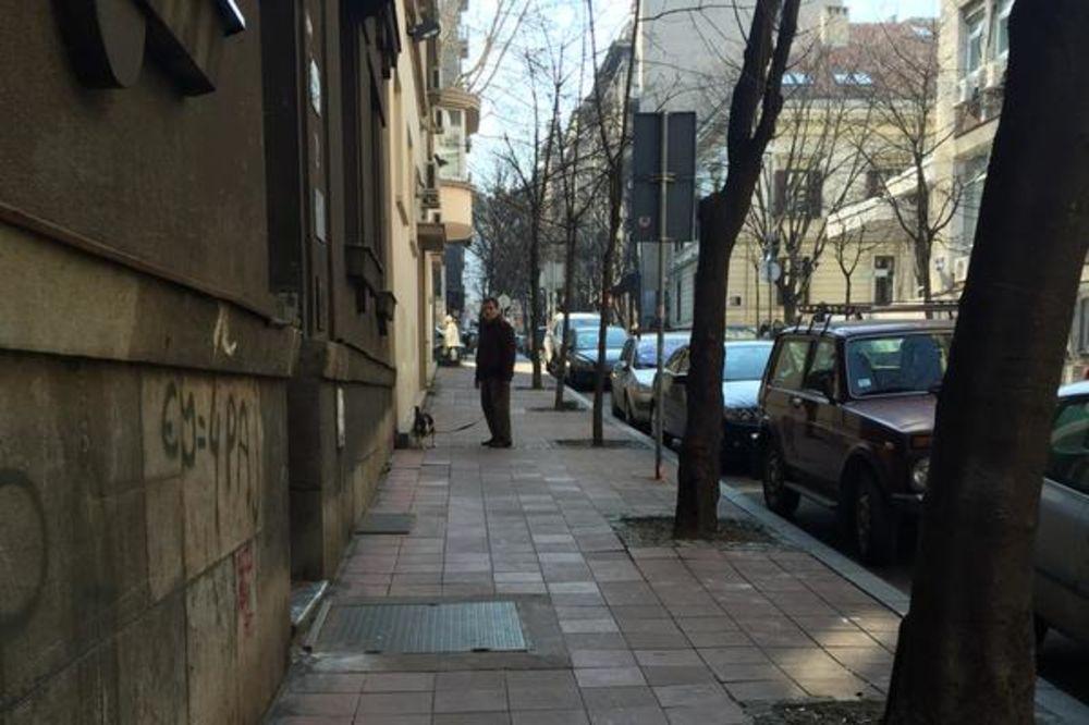 IZNENADIO DORĆOLCE: Koštunica umesto mačke prošetao psa