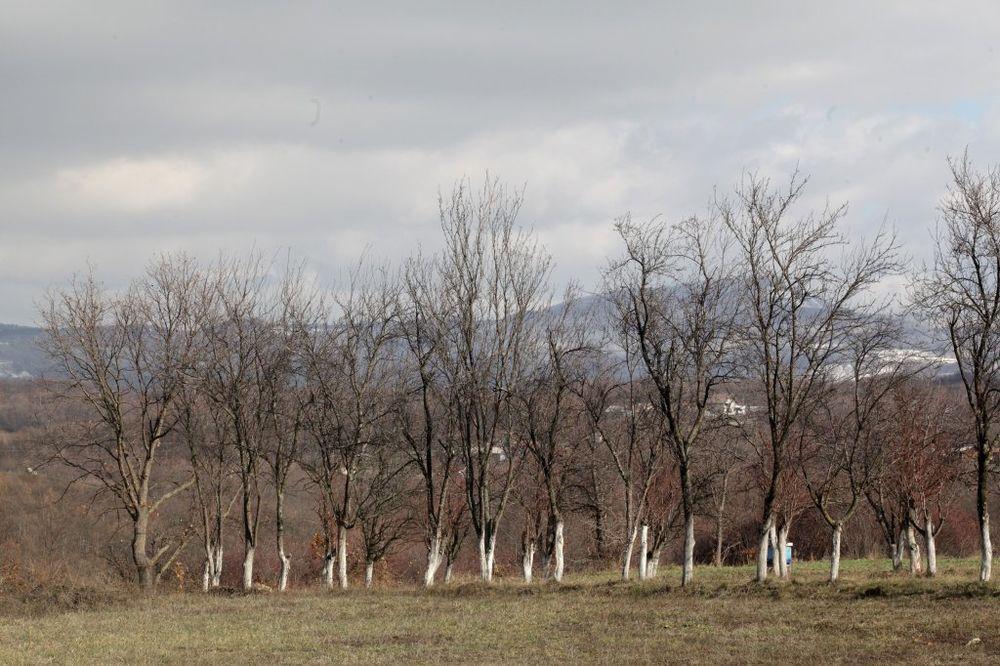 TRAŽE POMOĆ OD GRADSKE VLASTI: Protest poljoprivrednika u Čačku