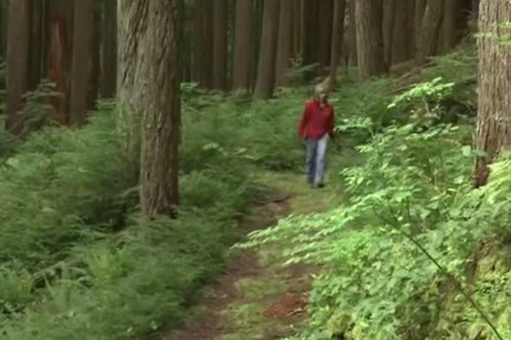 (VIDEO) Posle ovog teksta više nikada nećete proći kroz šumu na isti način
