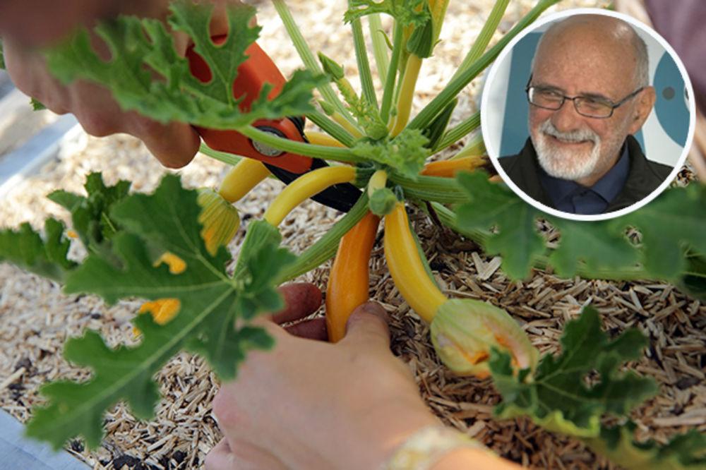 DIREKTOR SE OKOMIO NA ĐAKA: Prijavio ga policiji da gaji marihuanu, ovi našli povrće!
