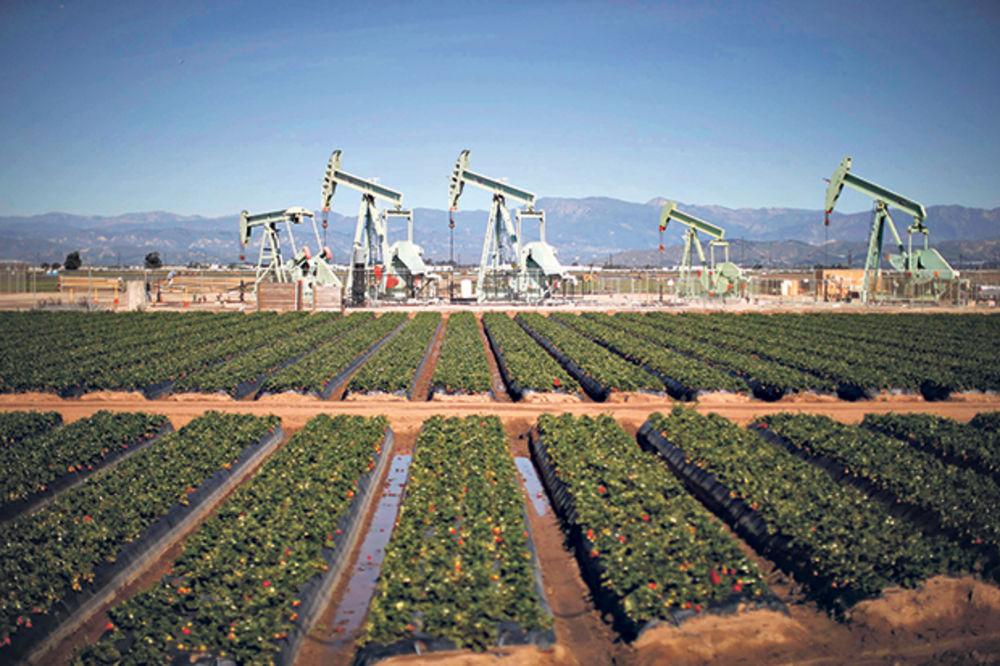 Najveći mesečni rast nafte od 2009.