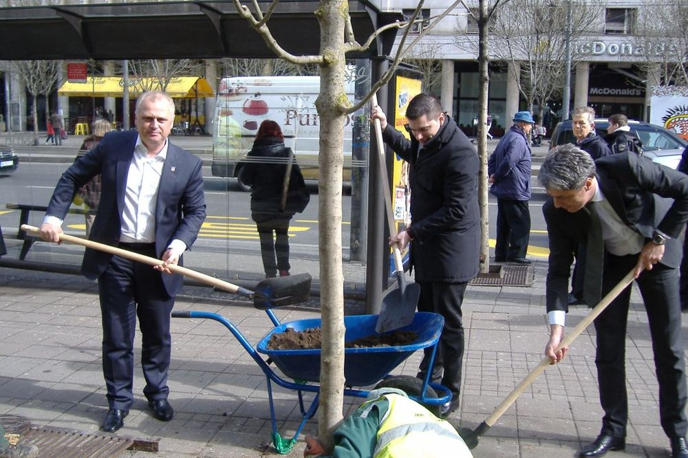 Vesić: Zasadićemo 4.000 stabala