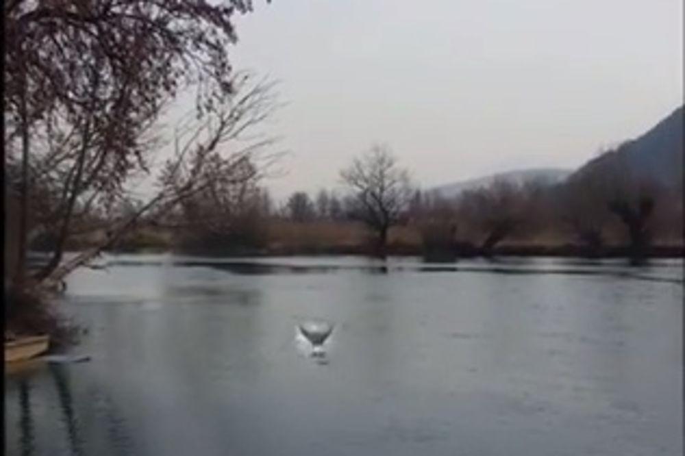(VIDEO) Ovako izgleda kada Bosanac vidi sirenu u reci Uni!
