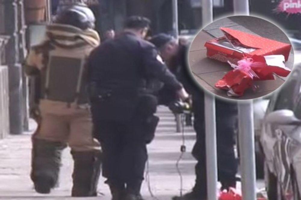 UHAPŠEN ZBOG PSEĆE KAKE: BIA sumnjiči anarhistu za kutije ispred zgrade Vlade Srbije!