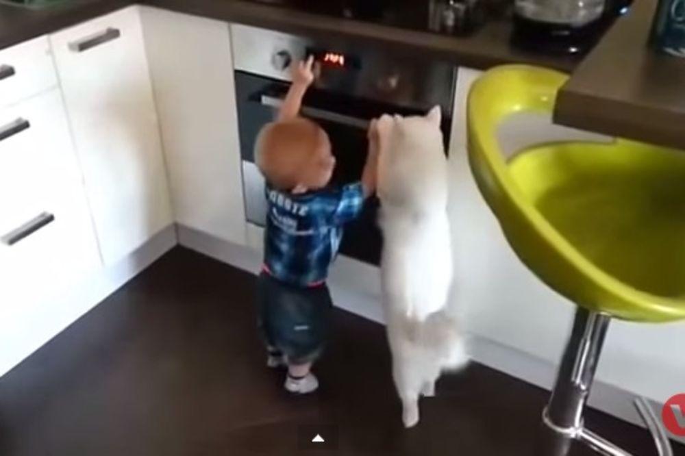 (VIDEO) Beba umalo ušla u rernu, nećete verovati šta je mačka uradila!
