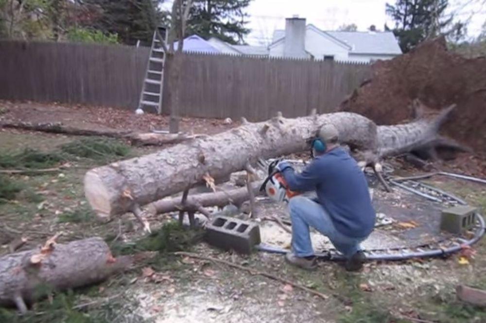 (VIDEO) Motornom testerom je presekao staro drvo, a ono što se desilo niko nije očekivao...