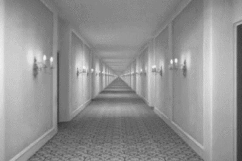 (GIF) ZBOG OVIH SLIKA ĆETE POLUDETI: Optičke varke koje će vam pomutiti um!