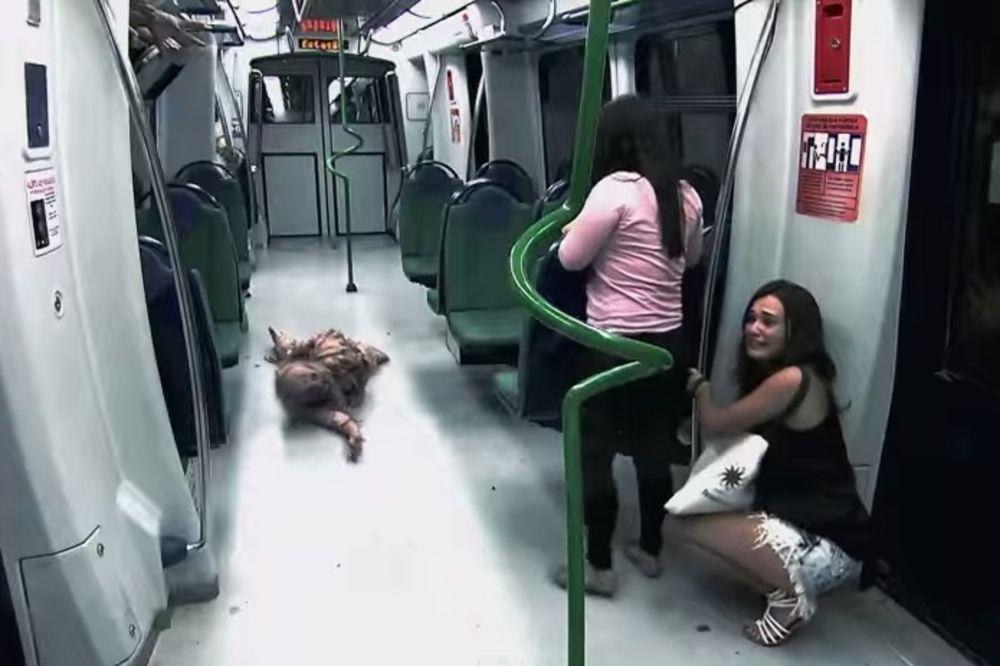 (VIDEO) ŽENA SE ONESVESTILA ZBOG SKRIVENE KAMERE: Prestravljene putnike ostavili kao večeru zombijim