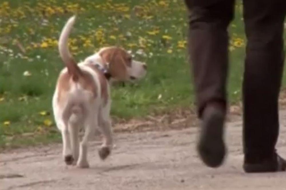 (VIDEO) Počinje izgradnja parka za pse u Nišu