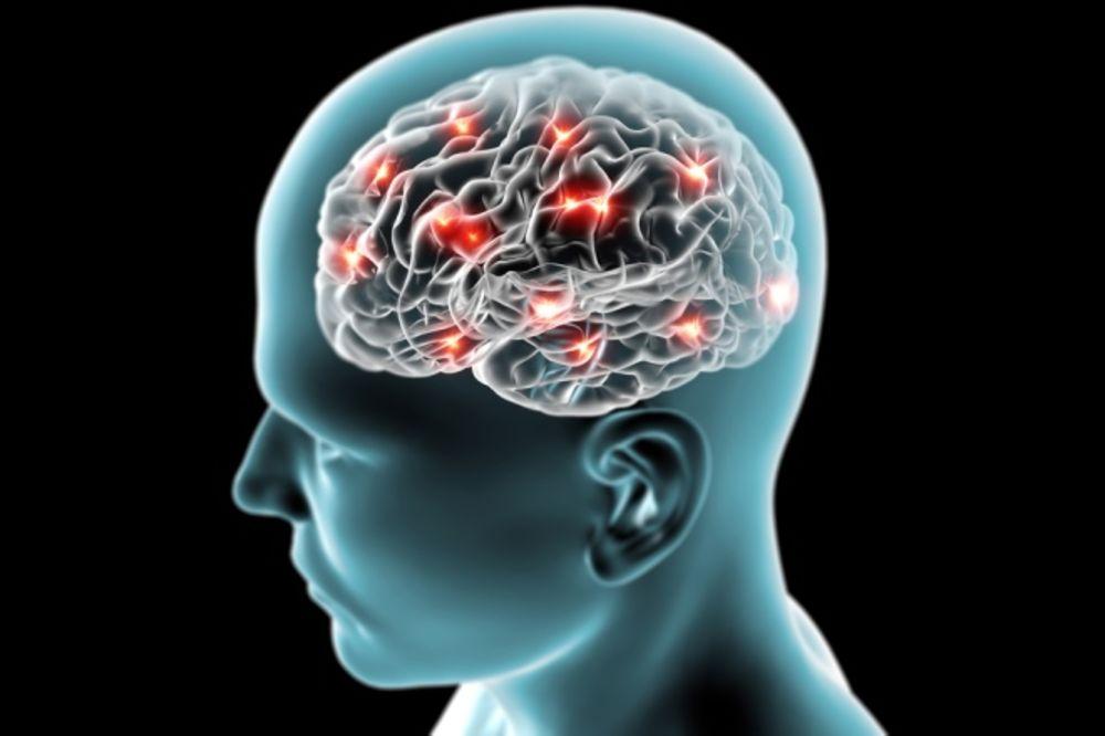MINI TEST INTELIGENCIJE: Koliko vam je razvijen mozak?