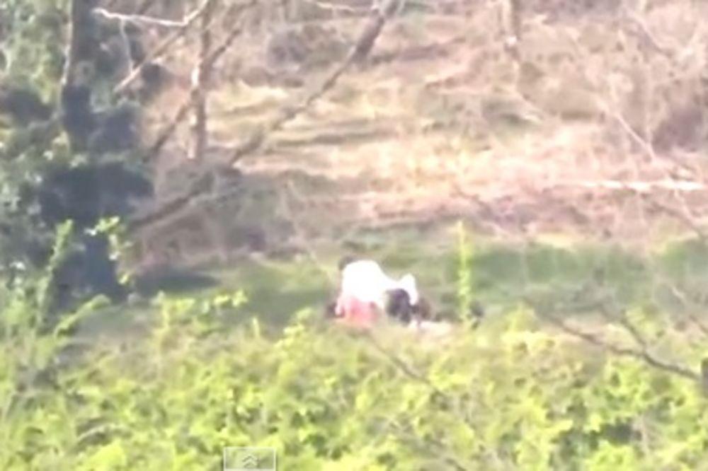 (VIDEO) NISU MOGLI DA OBUZDAJU STRASTI: Par imao seks u parku dok su ih prolaznici snimali!