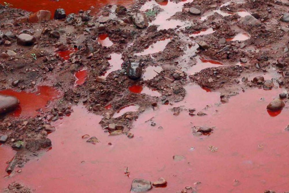 OVO NIJE BOŽJE ČUDO: Pocrvenela Sobinska reka
