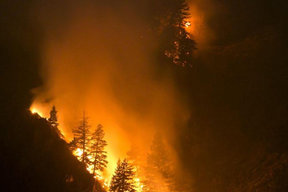 GORI 60 HEKTARA ŠUME: 150 vatrogasaca i četiri helikoptera u borbi sa vatrenom stihijom!