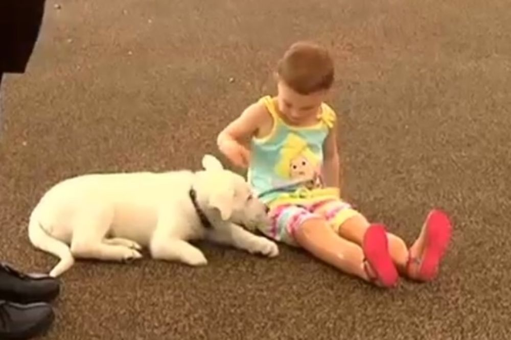 LJUBAV POMAŽE U NAJTEŽIM MOMENTIMA: Beba bez nogu i pas bez šape postali najbolji prijatelji