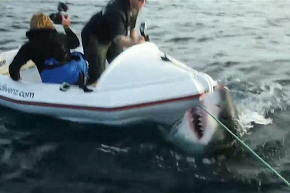(VIDEO) DA SE SMRZNEŠ: Ogromna ajkula napala ljude u gumenom čamcu