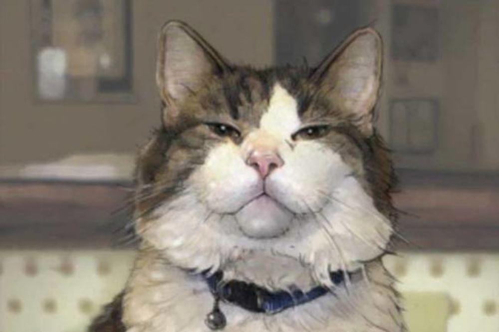 ANĐEO SMRTI: Mačka koja ima neverovatan dar, a nauka nema objašnjenje
