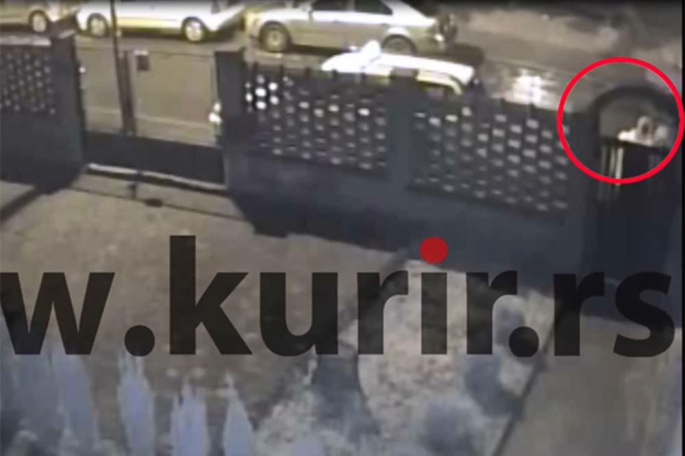 KURIR TV EKSKLUZIVNO: Pogledajte kako je pretučen Tasovac
