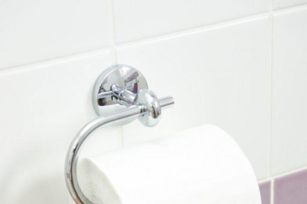 RASIPAJU PARE GRAĐANA: Političari samo na WC troše 650 evra dnevno!