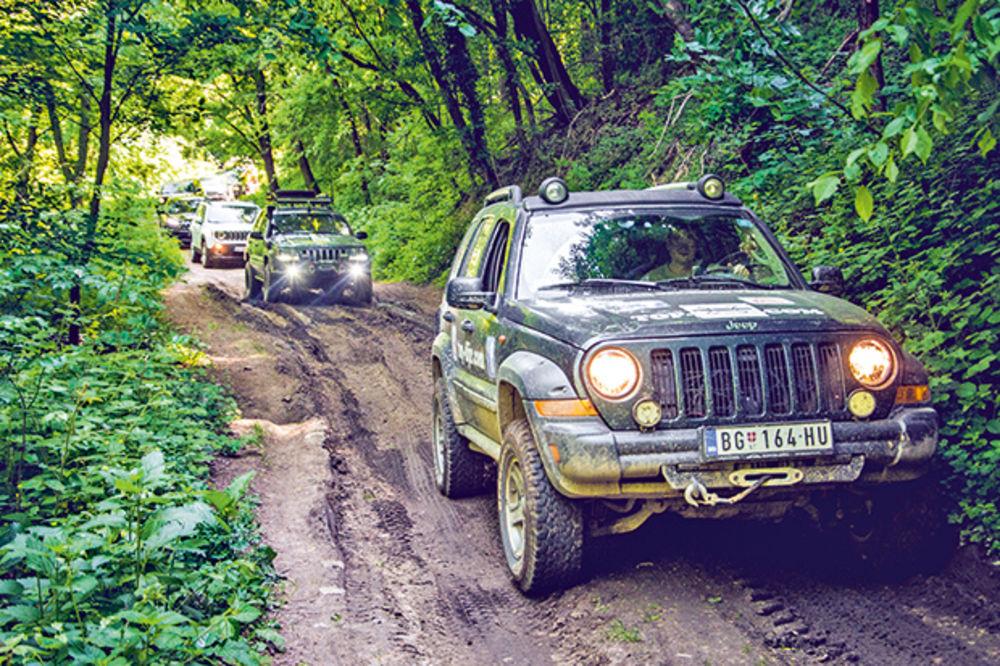 OFROUD NA FRUŠKOJ GORI: Doktori za šumske staze