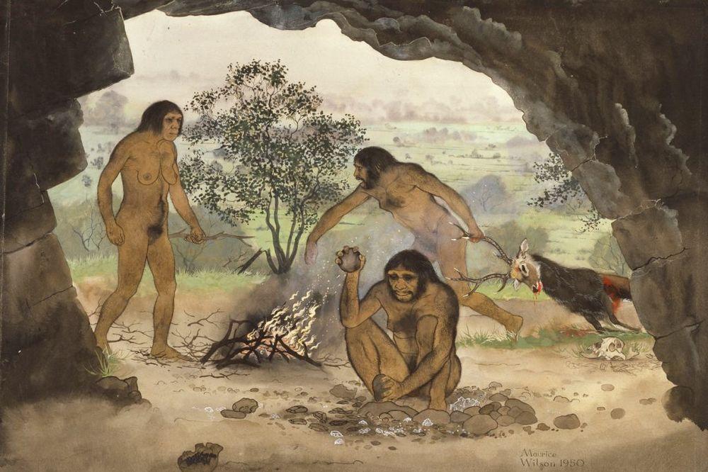 SENZACIONALNO OTKRIĆE: Pećinski ljudi su se drogirali?