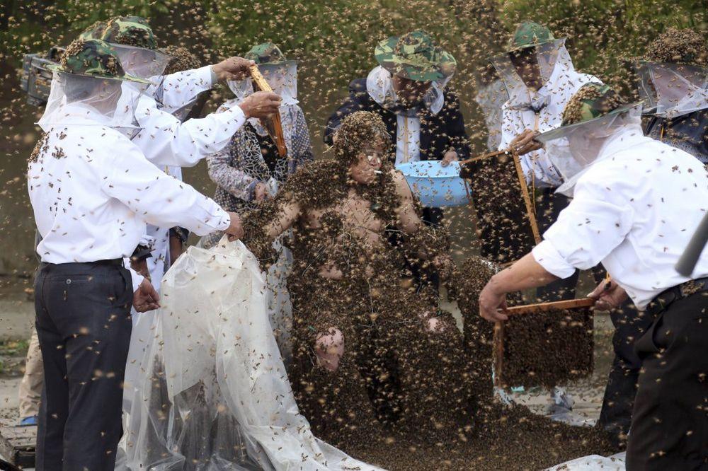 (FOTO) OBORIO GINISOV REKORD: Stavio na sebe više od milion pčela!