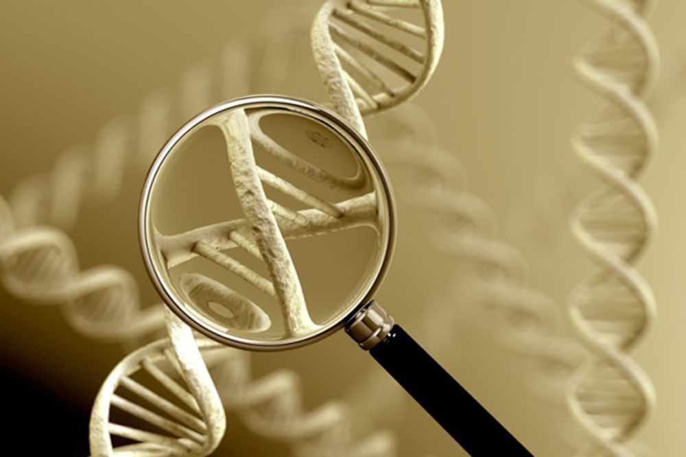 DNK TESTIRANJE: Kako je sve počelo?