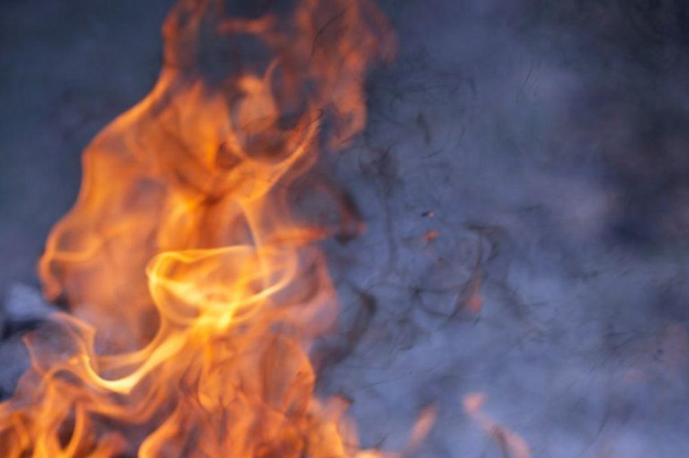 POŽAR KOD SJENICE: Bukti 10 hektara šume, vatrogasci nemoćni