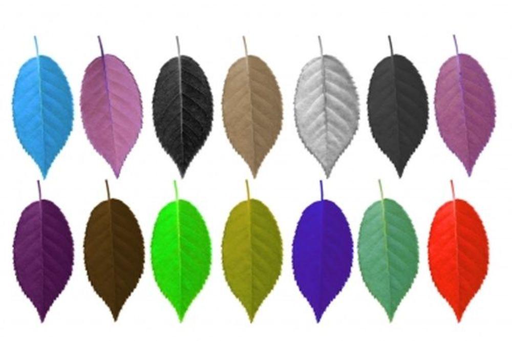 ODGOVORI I SAZNAJ: Koje boje je tvoj ego?