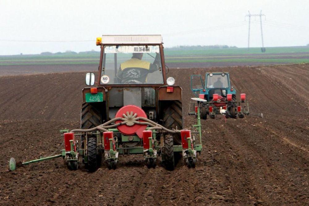 NEĆE SA SELA: Šumadijski osnovci hoće u srednju poljoprivrednu
