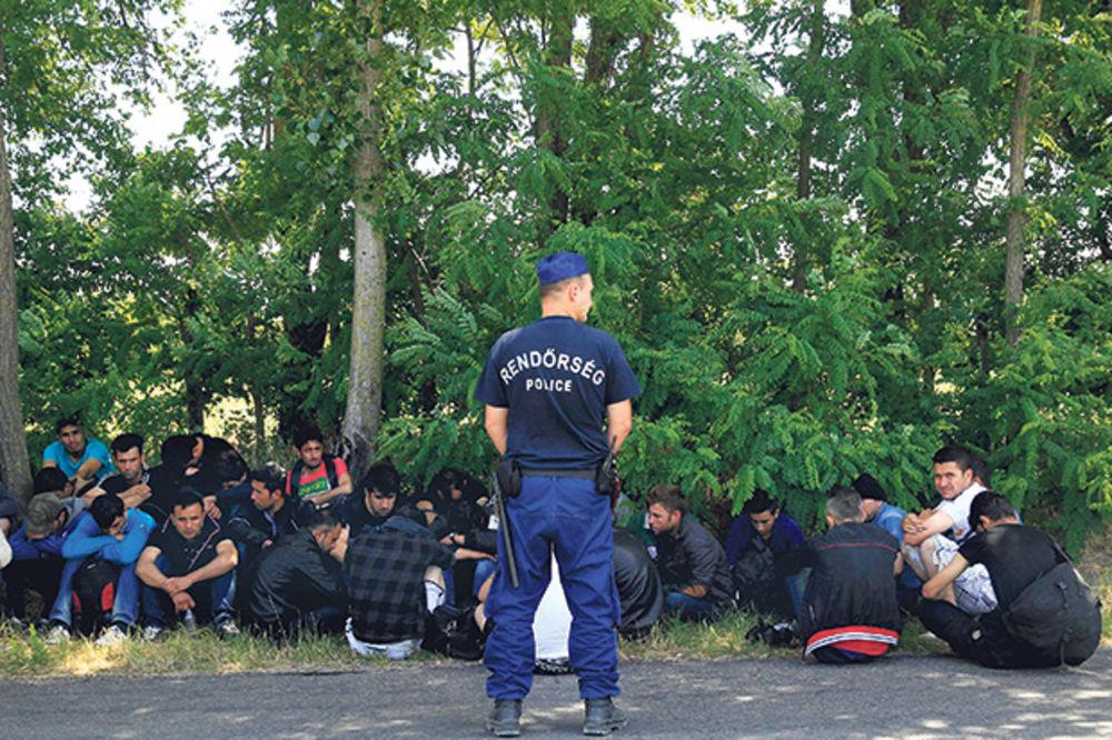 MAĐARI POSLALI JAKE SNAGE POLICIJE: Suzavcem ugušena pobuna u kampu za migranate!