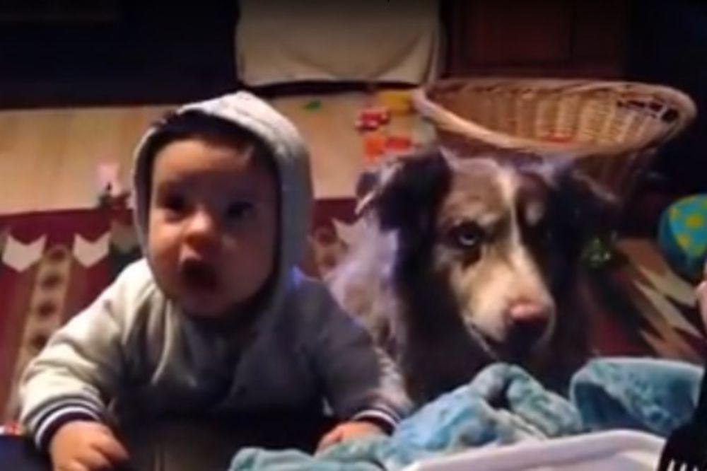 (VIDEO) Učila svog mališana da kaže mama, evo šta je pas uradio!