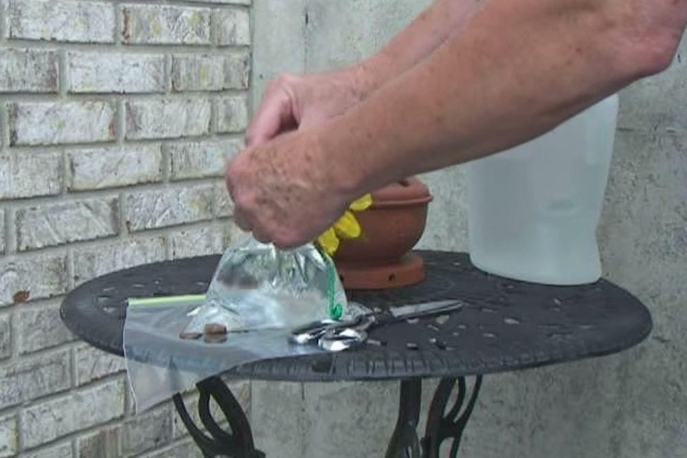 (VIDEO) OVAJ JEDNOSTAVAN TRIK MORATE DA PROBATE: Evo kako da se rešite dosadnih muva