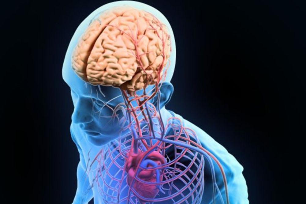 KO BI REKAO: Otkriven novi deo ljudskog tela!