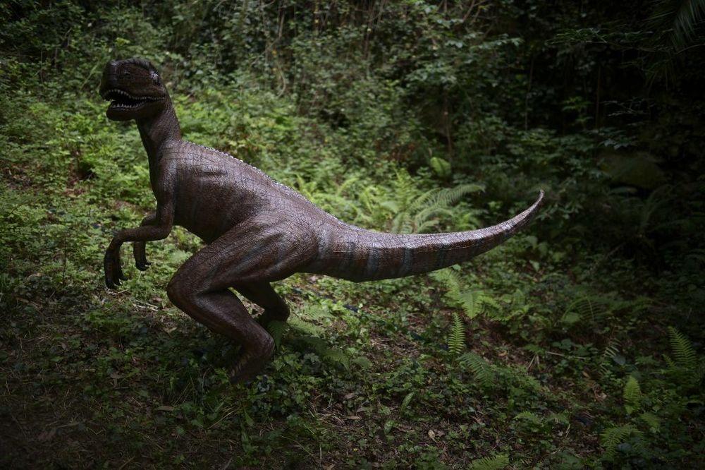 NOVOSAĐANI REKLI SVOJE: Dino park biće kod Spensa