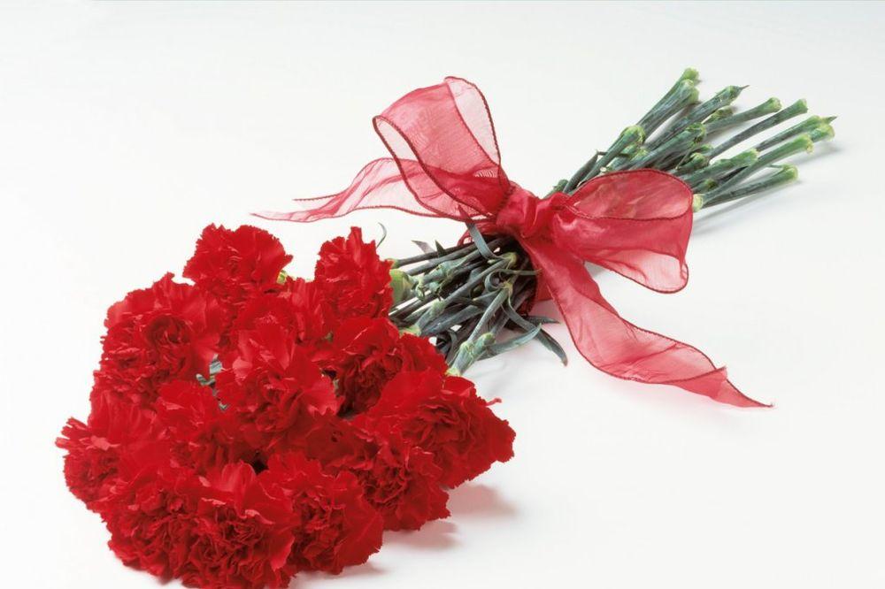 LJUBAVNA PRIČA KOJU NEĆETE ZABORAVITI: Buket crvenih karanfila...